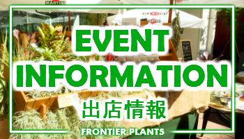 イベント出店情報