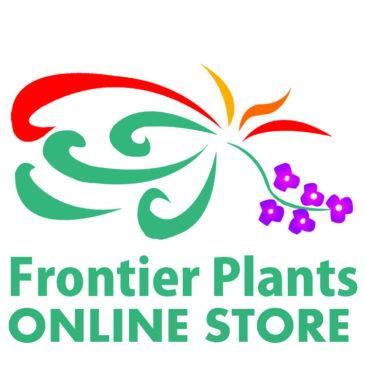 【Frontier Plants】オンラインストア4月27日120種類以上!入荷予定のお知らせ【エアプランツ チランジア】