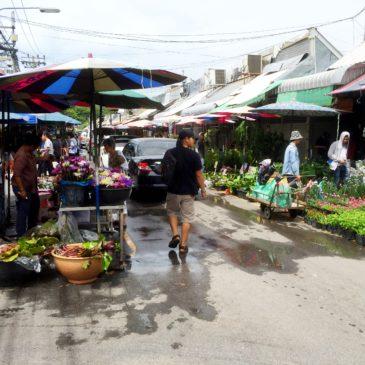 【Frontier Plants】タイ(バンコク)の植物 買い付け旅行記 チャトチャックマーケット編(場内の様子)