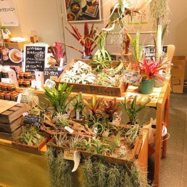 【イベント出展のお知らせ】チ・カ・ホで行われるkuraché「想いをつつむ」に2017年12月6日、7日出展